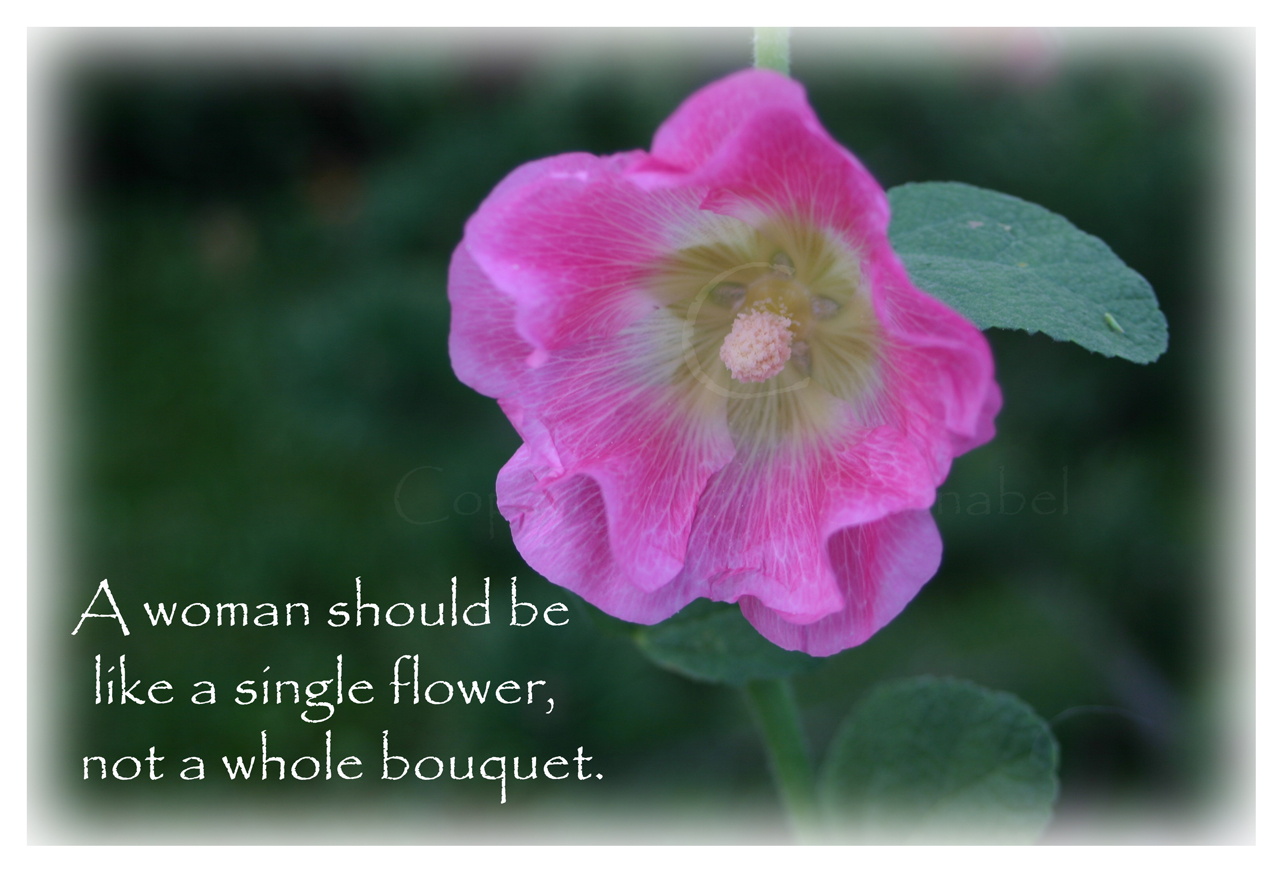 Pink Hollyhock Flower Woman Quote Cards From Zazzle