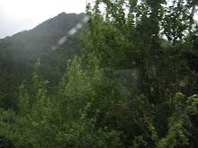 Cordillera camino a NELTUME