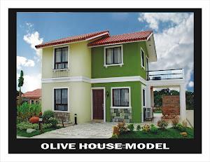 Olive House Model