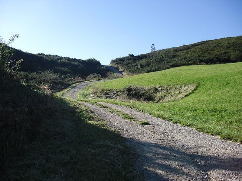 Monte de la Picota en Liencres