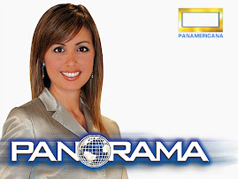 "VEA EL DOMINGO 7 ""PANORAMA"" 8:00 PM CANAL 5"