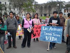 CAMINATA POR TOD@S LOS ANIMALES