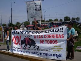 DOMINGO 6 DIC. PROTESTA EN ACHO