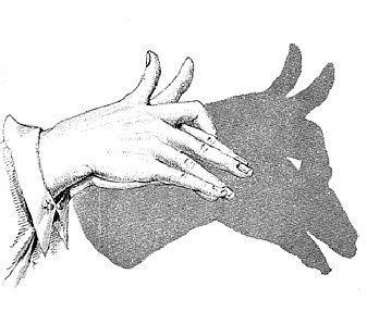 Hand Shadow Illusions