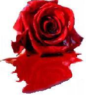 http://meuprimtemplatecriado.blogspot.com