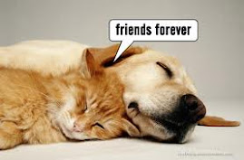 FRIENDS FOREVER!