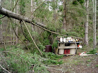 Fallen tree on trash shed, photo by Robin Atkins