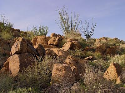 Boulder Mountain, Hwy 87, Phoenix AZ, photo by Robin Atkins