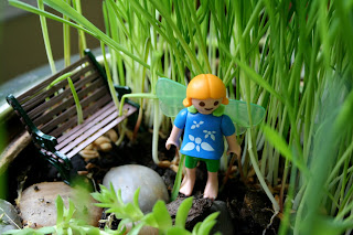 Children s backyard fairy garden