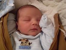 Baby Hamilton