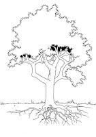 desene de colorat cu copaci