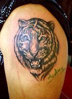 poze tatuaje cu  tigrii