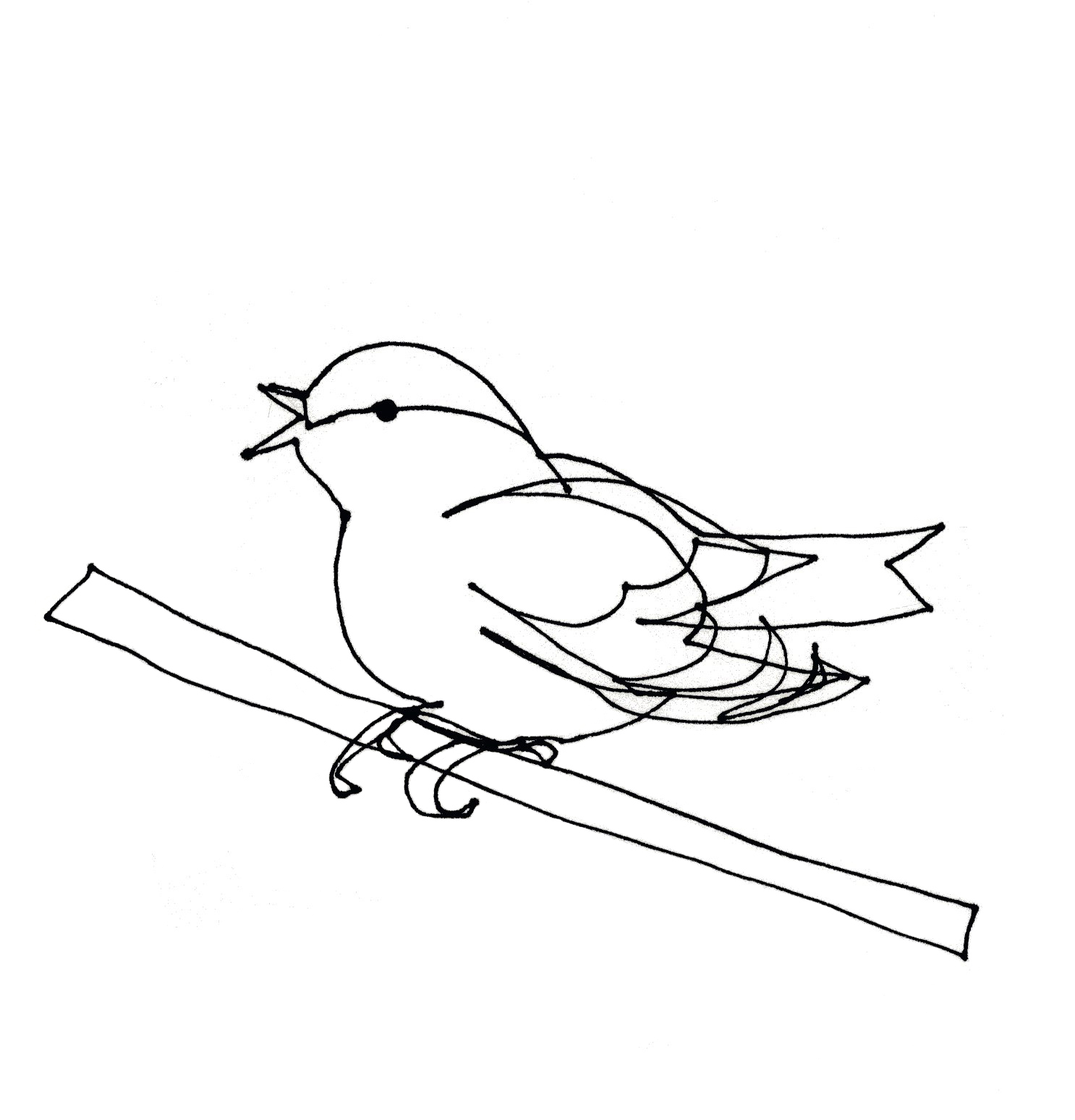 Line Drawing Bird : Single line drawings birds of pray