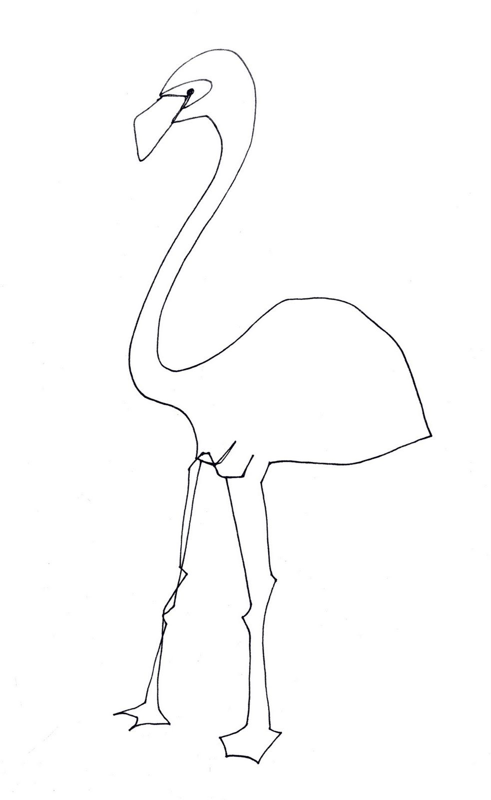 single line drawings birds of pray ii
