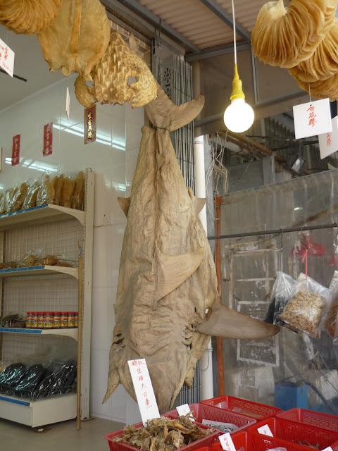 Tai O Village, Lantau Island, Preserved Seafood, Shark