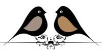 two black birds