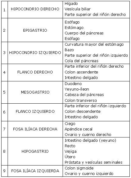 CIENCIAS BIOLOGICAS: TERMINOLOGIA ANATOMICA