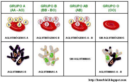 Problemas de grupo sanguíneo y Rh