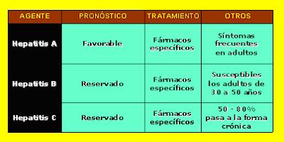 características de la hepatitis A, B y C