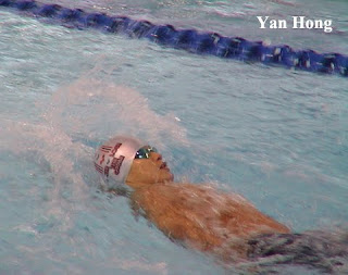 马运会游泳