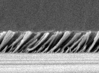 Caption: To achieve a very low refractive index, silica nanorods are deposited at an angle of precisely 45 degrees on top of a thin film of aluminum nitride. Credit: Rensselaer/Fred Schubert, Usage Restrictions: Include credit line.