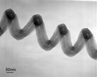 Transmission electron microscope (TEM) micrograph of a singly wound, coiled carbon nanofiber (NF) synthesized through thermal chemical vapor deposition (CVD),  at high In concentration (In/Fe ratio less than 3).