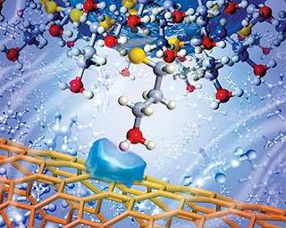Researchers measure carbon nanotube interaction