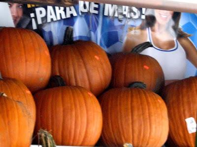 Halloween harvest pumpkins para que mas