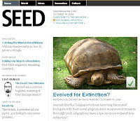 SEED magazein