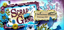 Deuxième Édition de Scrap en Gang