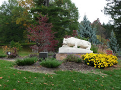 Nittany Lion at Penn State Mont Alto