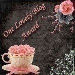 premio one lovely blog award!!