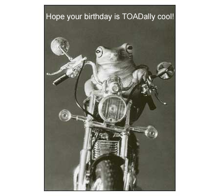 funny birthday greetings for friend. funny birthday greetings for