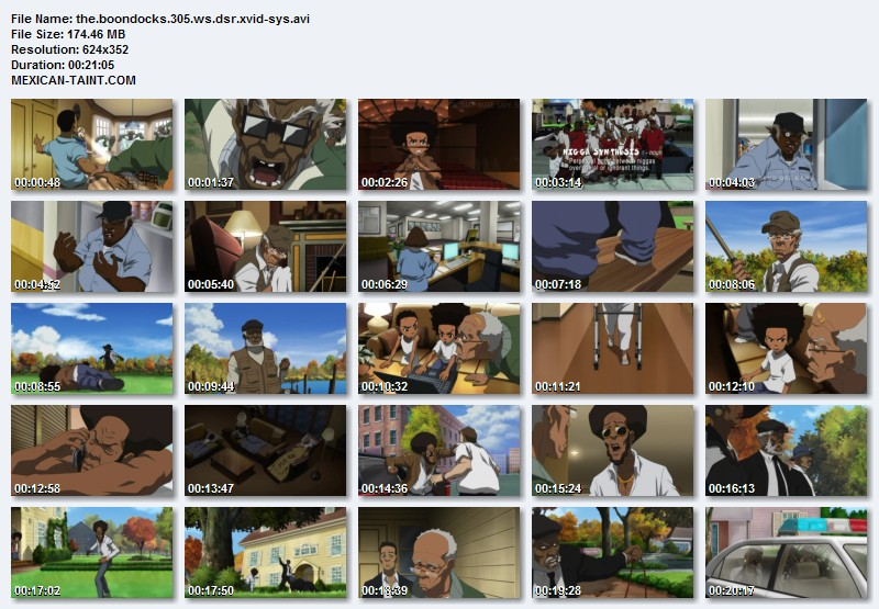 The.Boondocks.S03E05.WS.DSR.XviD-SYS