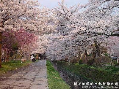http://4.bp.blogspot.com/_TahXQ2WiF0s/Sh_jL8eLyNI/AAAAAAAAQ-w/PkGuV6t9yYc/s400/Sakura+Season+In+Japan+06.jpg