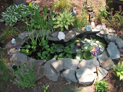 Wild things build it and they will come for Koi pond kits lowes