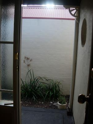 Tikki This Is Looking Out My Front Door