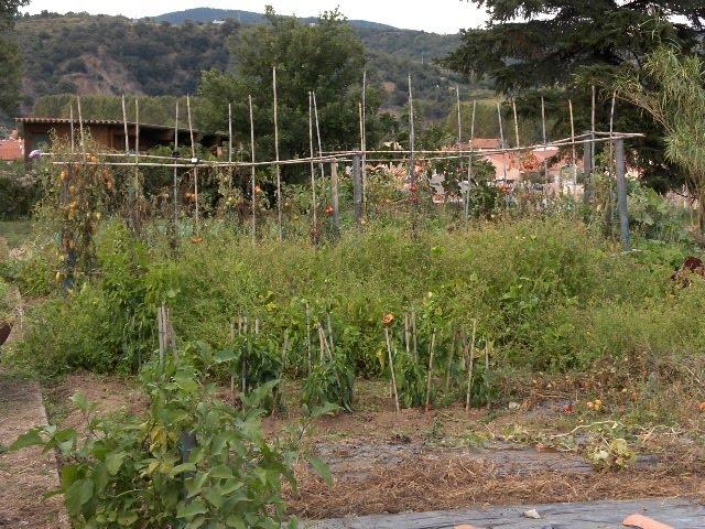 [jardin+can+balent+003.JPG]