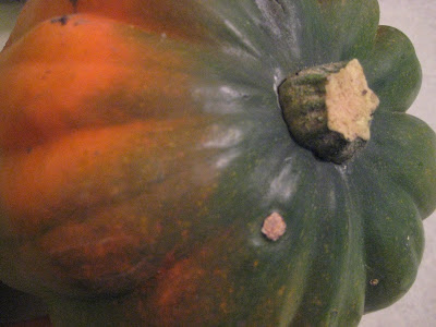 12 Weeks of Winter Squash - Roasted Corn Pudding in Acorn ...