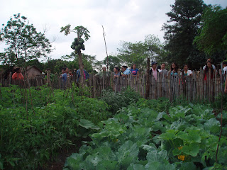 Image of a urban land farm
