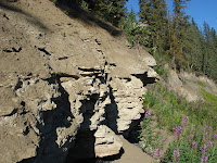 Red Willow River Dig Site