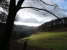 Hafod estate