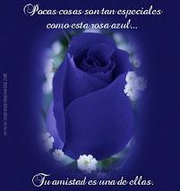 GRACIAS NOE...