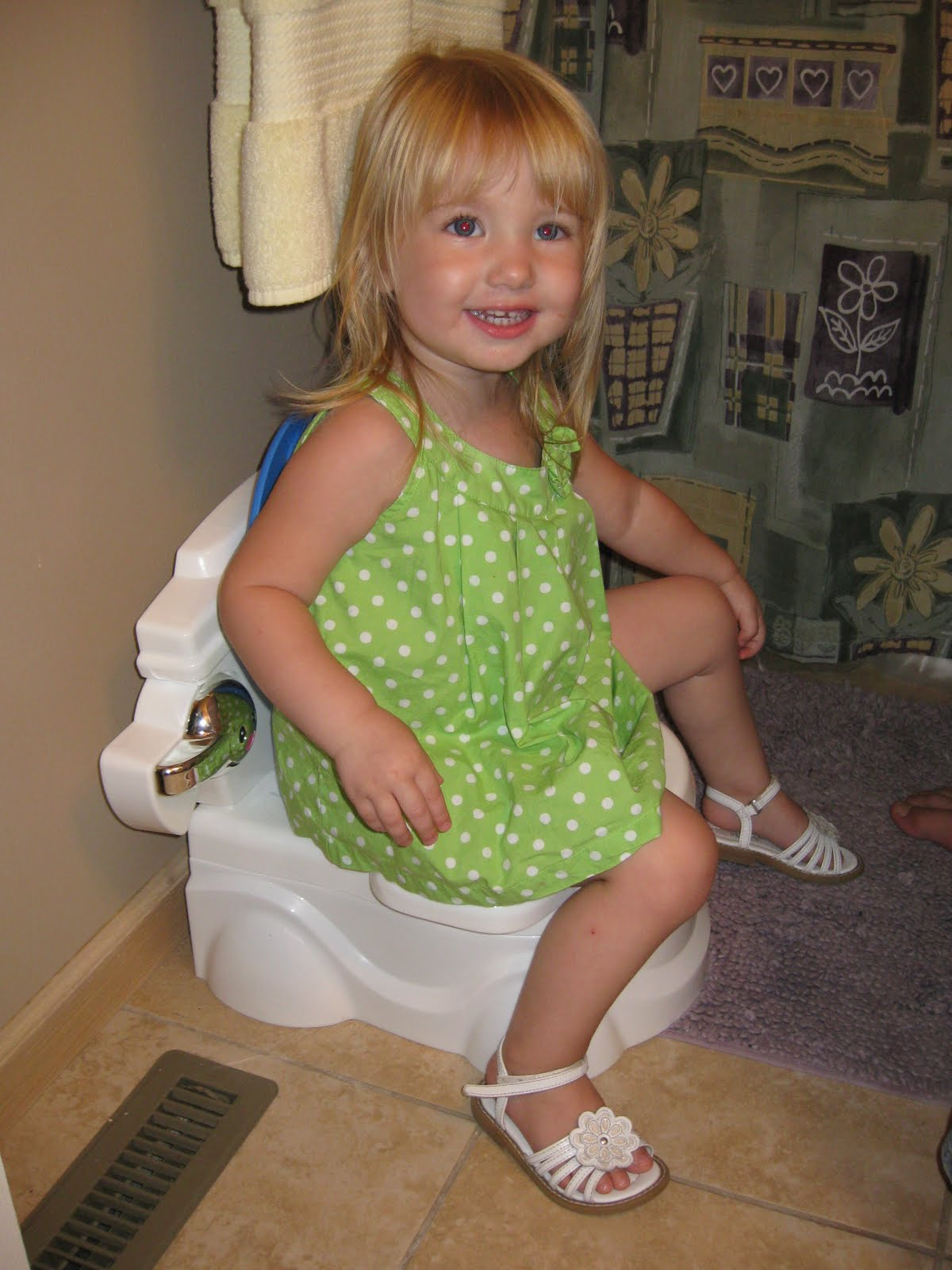 Best Travel Potty Seats For Toddlers How To Teach Potty