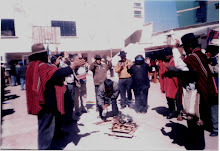 Carrera de historia U.Indigena Tawantinsuyu