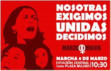 Mujeres chilenas, por su dignidad