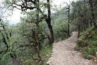 Uphill Task
