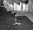 Henri Cartier - Bresson
