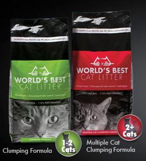worlds best cat litter is