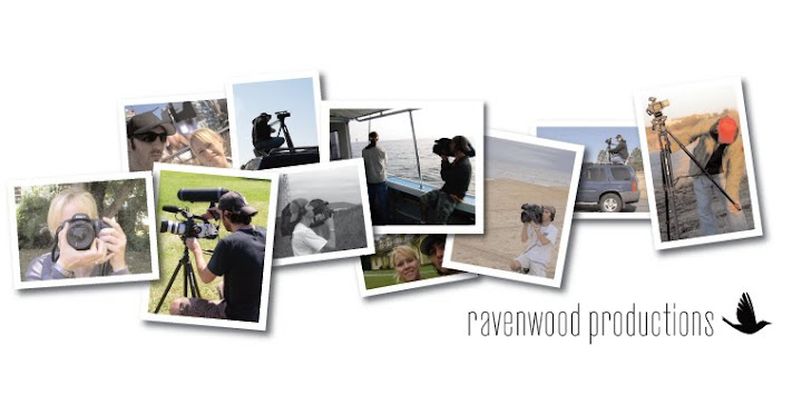 ravenwood productions